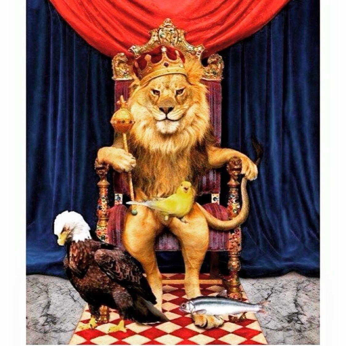 Поздравление царя с днем рождения картинки